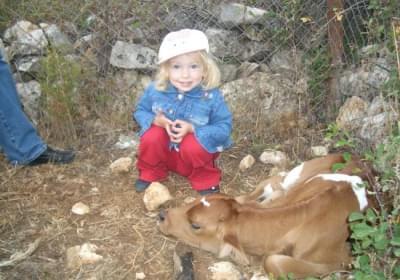 Agriturismo La Valle Dei Tramonti